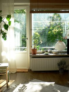 light and green plants