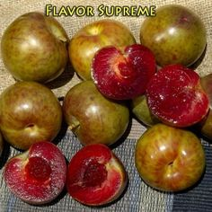 Flavor Supreme Pluot® Interspecific Plum - Taste test winner. Plum/apricot hybrid with sweet, richly flavored, firm red flesh. Greenish-maroon mottled skin. Pollenized by Santa Rosa and Late Santa Rosa plums or Flavorosa, Flavor Queen and Geo Pride Pluot