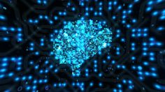 Seamless animation of digital brain network activity for scientific films and television programs about web, virtual reality, neurons, thinking process, health, biochemistry, technology, medicine, nanotechnology, creativity of brain and more.
