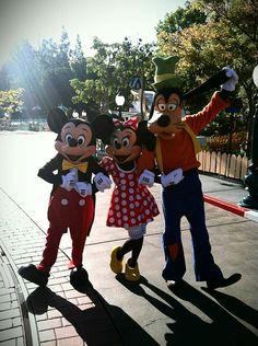 Good MOrning Disneyland!