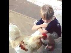 Boy Hugs a Chicken