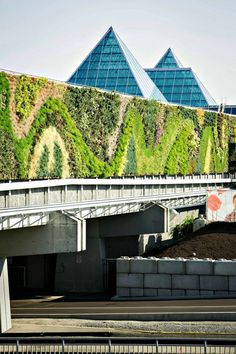 Living Wall Timelapse by Green Over Grey - The living wall is fully hydroponic, there are 120 unique plant species, and it includes more than 50,000 individual plants.