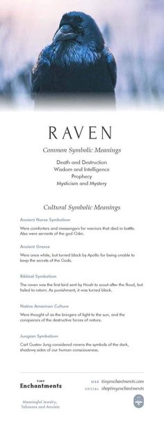 Raven Symbolism - Raven Dream Meaning, Raven Mythology and Raven Spirit Animal Meanings Full Infographic Raven Tattoo Meaning, Meaning Of Raven, Raven Spirit Animal, Animal Spirit Guides, Spirit Animal Tattoo, Animal Meanings, Animal Symbolism, Dream Symbols, Tattoos