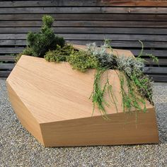 unusual planters design Minimalist Wood Planters That Remind Real Life Growing Situations from Pour les Alpes Contemporary Planters, Modern Planters, Wood Planters, Planter Boxes, Landscape Design, Garden Design, Unusual Plants, Garden Pots, Moss Garden