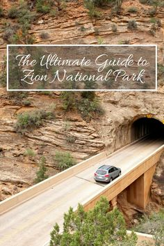 The Ultimate Guide to Zion National Park: Angel's landing, Walter's wiggles and Weeping rock.