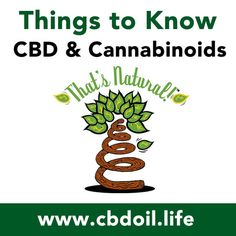 11 Things to Know about CBD and Cannabinoids from That's Natural! http://cbdoil.life/blogs/news/113705671-11-things-to-know-about-cbd-cannabinoids  #natural #health #wellness #holistic #medicine