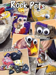 """Children own """"rock pet"""" - research into where their rock might have come from, why is it that shape and colour? Complete """"rock profile"""""""