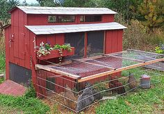"haha! Memories of home...   ""This is a great site where the public has posted their own chicken coops! Inspiring designs! Get building!"""