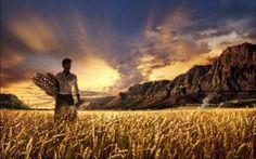 A palavra de Deus é uma fonte de bençãos e instrução para toda a humanidade.  Na bíblia encontramos os ensinamentos para todas as situações de nossa vida. A bíblia nos ensina a nascer, viver e morrer.  E para vivermos nesta terra, nós temos que trabalhar ou labutar(trabalhar duro).  Do suor do teu rosto comerás o teu pão - Gênesis 3:19.  Com dificuldades no seu papel como trabalhador ou trabalhadora, no seu sustento, e até com dificuldades, esta batalha dura a vida inteira até a morte…