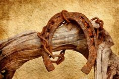 Old rusty horseshoe and chain hanging on driftwood.