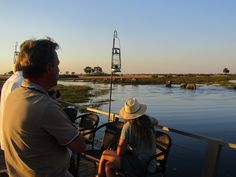 Guests were celebrating their 25th anniversary cruising on our barge Queen Sylvia, as a herd of elephants decided to put on a show that everyone will remember forever! Joined by another family, guides Fanie and ND, and manager Nuno, everyone celebrated with a glass of champagne at sunset, while two young elephant bulls played in the water Chobe National Park, National Parks, Herd Of Elephants, Glass Of Champagne, 25th Anniversary, Wilderness, Safari, Cruise, Wildlife