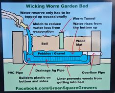 Neat idea for a water reservoir planter bed. Green-Square-Growers-first-planter-box,-Victoria-Park-27