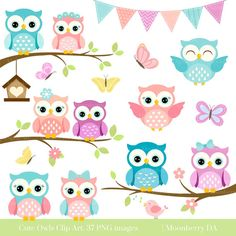 Owls Clipart 'CUTE OWL CLIPART' Digital by MoonberryDigitalArt