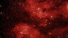 Preview wallpaper swan, lbn 274, space, sky, nebula, constellation 1920x1080