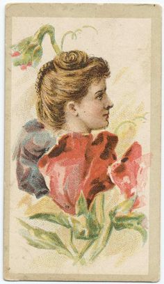 Tobacco Card Beauties (flower girls)