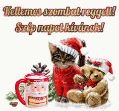Share Pictures, Animated Gifs, Good Morning, Teddy Bear, Humor, Winter, Advent, Animals, Watch