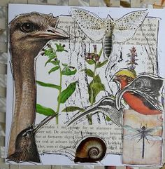 Fasters korthus: Botanical collage animal-and-nature 13