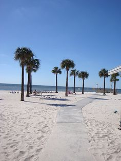 This is a quaint little beach - not too far of a drive - such a nice get away! Located in Hernando County, FL.