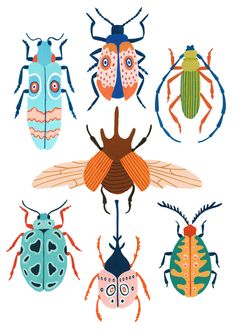 Patterned Beetles Art Print by Ambers Textiles - X-Small Bugs Drawing, Insect Art, Cute Patterns Wallpaper, Camping Crafts, Pattern Illustration, Fantastic Art, Art Classroom, Abstract Pattern, Beetle