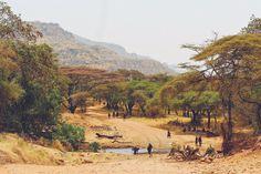 Kara-Tunga Tours (@KaramojaUganda)