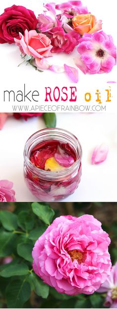 make_rose_oil_apieceofrainbowblog