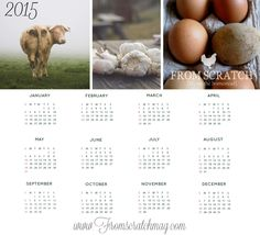 You need a 2015 Calendar and we have one that you can print for FREE. Please enjoy!