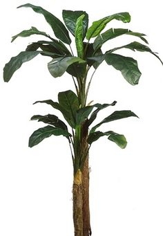 One 7 Foot Artificial Double Trunk Banana Palm Tree *** Read more reviews of the product by visiting the link on the image.
