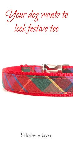 Red holiday plaid dog collar. Perfect for Christmas. A plaid dog collar in bright and festive jewel tones.