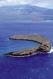 Molokini Snorkeling Tours, Maui Activities, Molokini Crater, Best Snorkeling in Maui | Maui Fun Company