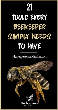 It's easy to become overwhelmed by the limitless options available to beekeepers. Fortunately, you don't need to purchase a long list of tools to start beekeeping. Below is our list of tools every beekeeper needs to have: Drone Bee, Honey Bee Hives, Honey Bees, Beekeeping For Beginners, Bee Supplies, Raising Bees, Bee Boxes, List Of Tools, I Love Bees