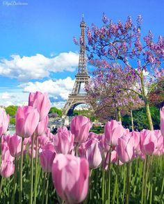 Tulips 💐💐 in Paris Paris France, Paris 3, Eiffel Tower Photography, Paris Photography, Torre Eiffel Paris, Spring Scenery, Paris In Spring, Hello France, Destinations