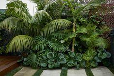 Tropical Backyard Landscaping, Backyard Pool Designs, Backyard Garden Design, Small Tropical Gardens, Tropical Garden Design, House Landscape, Landscape Design, Estilo Tropical, Garden Styles