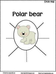 polar bear circle map.