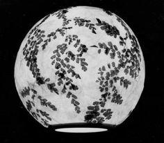 Crea una lampara de papel con pocos materiales (haz, como hacer)   MioPlanet