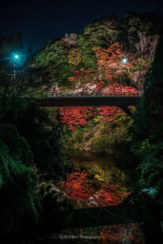 Yoro gorge, Chiba, Japan