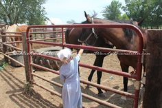 Most Amish children have a fondness for the animals on their farms. This Amish girl was anxious to pet her grandfather's horse.