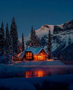 Sweet dreams - Barbara Maclean - Google+