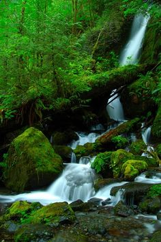 Merrymere falls in Olympic National Park