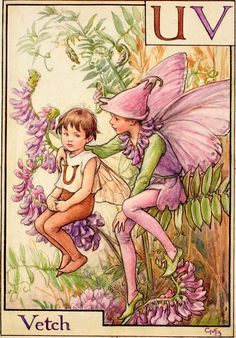 """Poor little U Has nothing to do! He hasn't a flower: not one. For U is Unlucky, I'm sorry to tell; U stands for Unfortunate, Ugly as well; No single sweet flowery name will it spell— Is there nothing at all to be done? """"Don't fret, little neighbour,"""" says kind fairy V, """"You're welcome to …"""