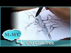 Painting an Old Oak Tree in My Watercolor Journal - YouTube