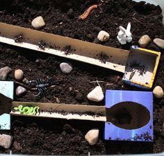 BC Language Arts Oral Language Underground Animals Small World Play Toddler Fine Motor Activities, Sensory Activities Toddlers, Eyfs Activities, Animal Activities, Sensory Tubs, Sensory Play, Sand Play, Small World Play, Inspired Learning