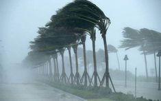 إلزموا المنازل.. احذروا التنقل والسفر.. اجلسوا الأطفال بالبيوت تطلق صفحة Sous Le Vent, Storm News, Wind Damage, Rosarito, Fort Lauderdale Beach, Storm Surge, North West, San Vicente, Sunsets