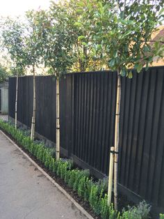 """The post Best Backyard Privacy Fence Landscaping Ideas"""" appeared first on Pink Unicorn garden Fence Privacy Fence Landscaping, Privacy Fence Designs, Backyard Privacy, Privacy Fences, Diy Fence, Backyard Fences, Garden Fencing, Landscaping Ideas, Pallet Fence"""
