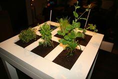 Ikea hack herb table