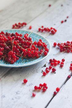 Red Currants by Emoke Szabo