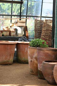 terra cotta pots at Petersham Nurseries in Richmond, Surrey, UK Garden Urns, Garden Planters, Container Plants, Container Gardening, Rustic Outdoor Spaces, Garden Shed Interiors, Potting Sheds, Garden Ornaments, Terracotta Pots