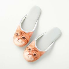 Cat pattern slippers