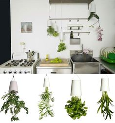 The Sky Planter by Boskke encourages abundant greenery using a special reservoir that gradually feeds water to the plant's roots, protecting against evaporation and drainage. The upside-down design also frees up floor space.