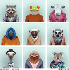 Barcelona-based photographer, Yago Partal, created a hilarious photo series called: 'Zoo Portraits,' showing various animals dressed like humans! http://www.zooportraits.com/