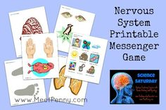 Meet Nervous Nellie. A unit study for the Nervous System with FREE printable game by www.MeetPenny.com